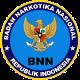 bnn-80